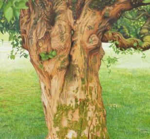 Lebensbaum | Malerei von Sven Wiebers | Acryl auf Baumwolle, realistisch