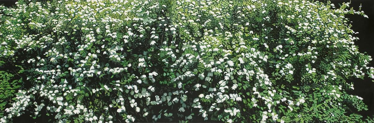 Grün Weiß | Malerei von Sven Wiebers | Acryl auf Baumwolle, realistisch