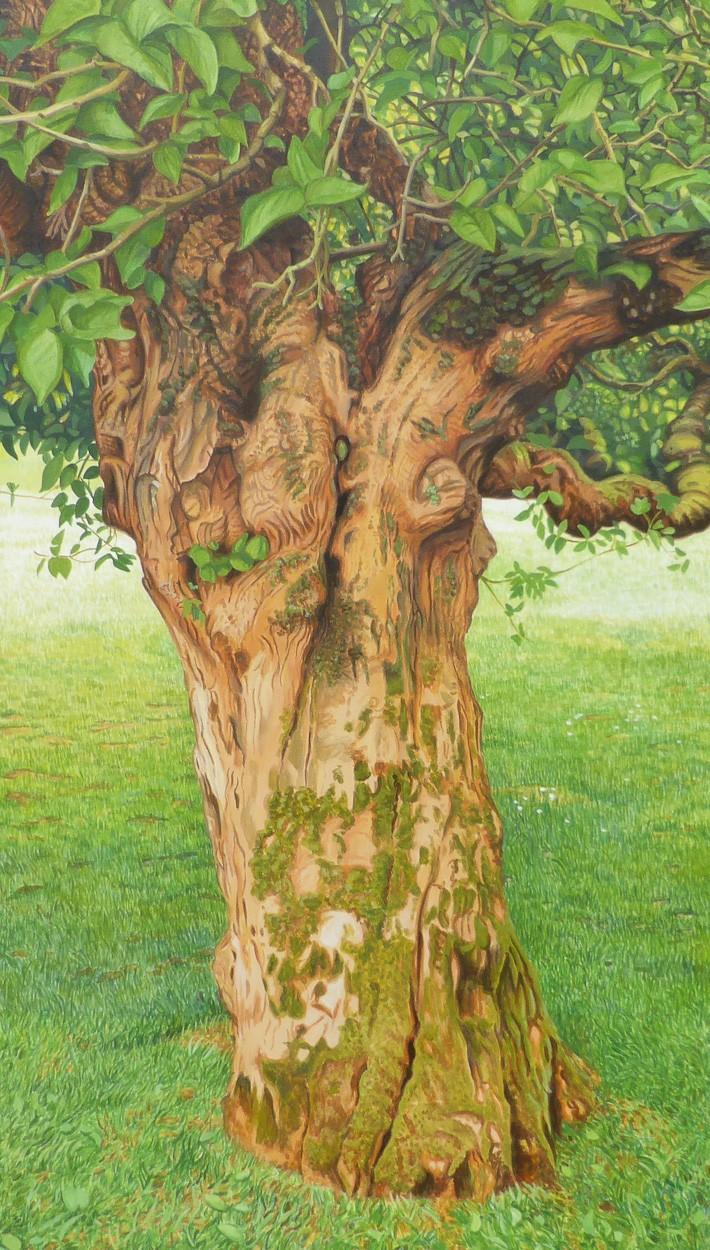Lebensbaum   Malerei von Sven Wiebers   Acryl auf Baumwolle, realistisch