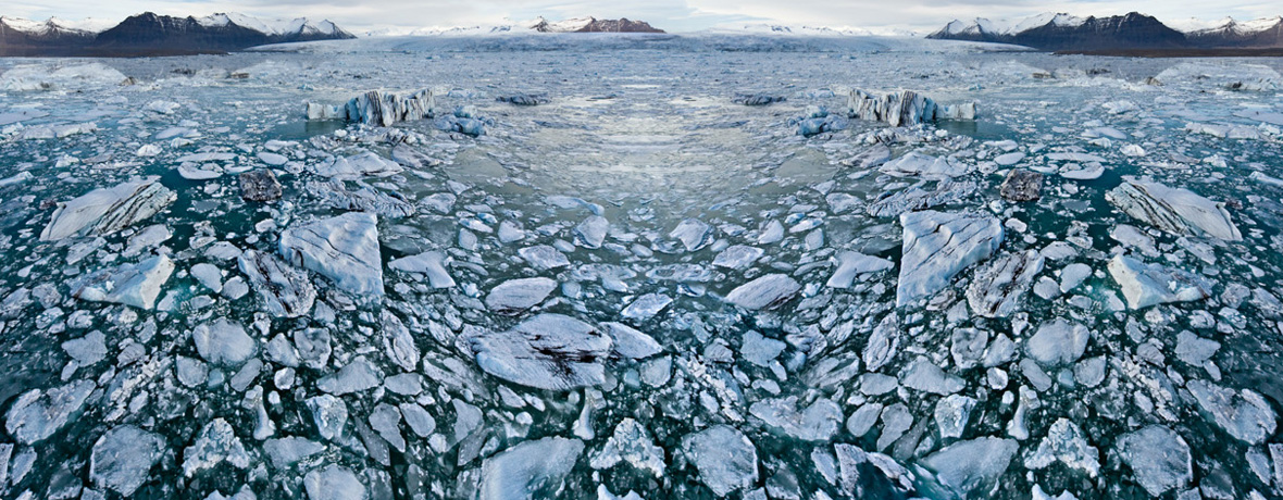 Online Galerie | Fotografie Polar Bear von Finkbeiner & Salm