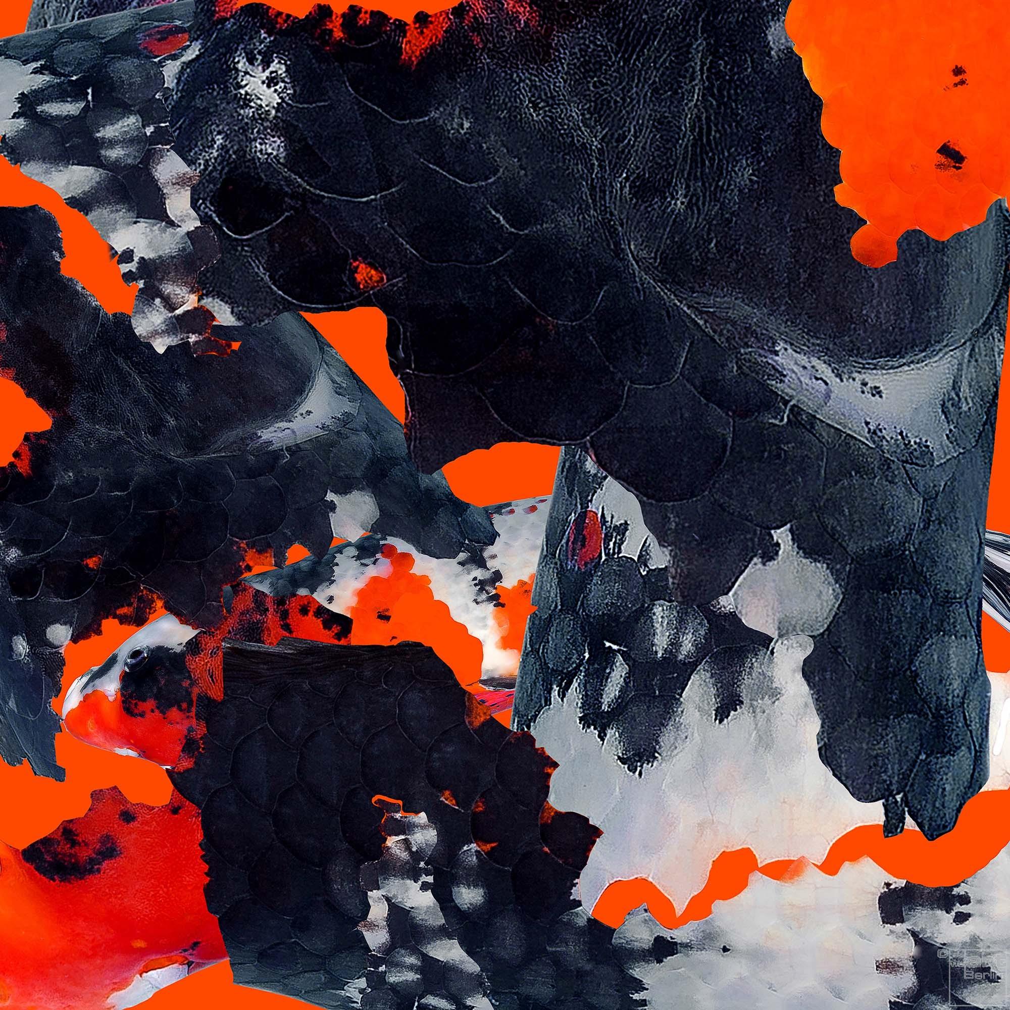 Koi Destroy 1 | Fotografie von Theresa Lambrecht, Echter FotoAbzug auf Alu Dibond, limitierte Edition