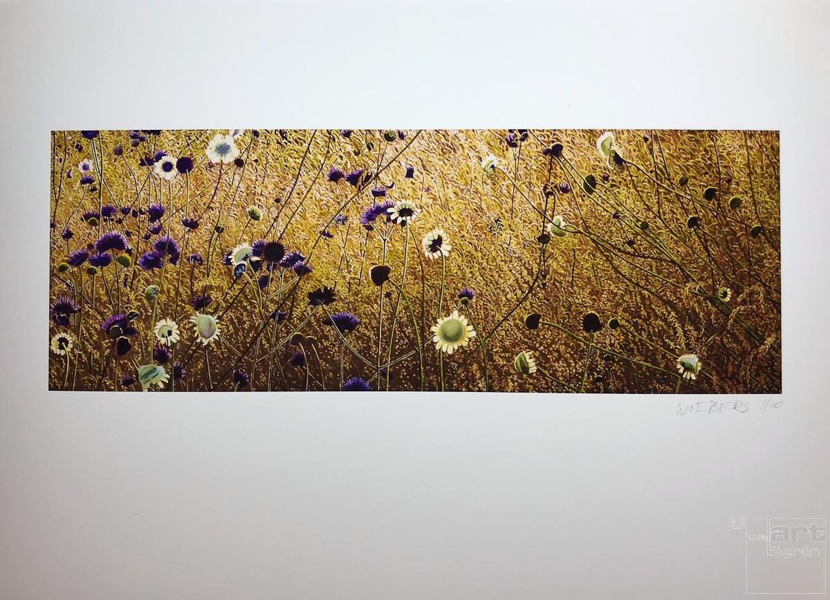 "Kunstdruck ""Korbbluetler"" by Wiebers   Fineartprint Hahnemühle, Limitierung 10"