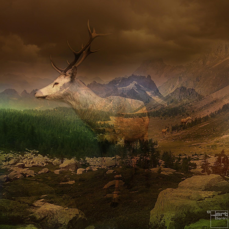 Dignified Landscape | Fotografie von Theresa Lambrecht, Fotodruck auf Alu-Dibond, limitierte Edition