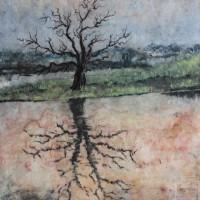Baumspiegelung im Wasser