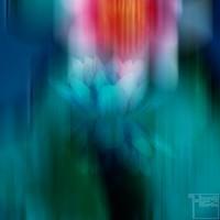 Mysterious Lotus