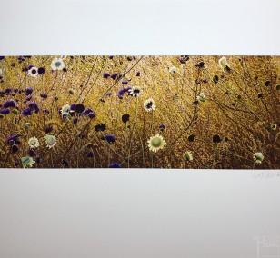 "Kunstdruck ""Korbbluetler"" by Wiebers | Fineartprint Hahnemühle, Limitierung 10"