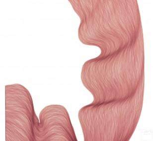 Raspberry Cream Fold | Lali Torma | Zeichnung | Kalligraphie Tinte auf Papier