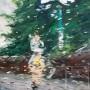 Run errands in the rain I