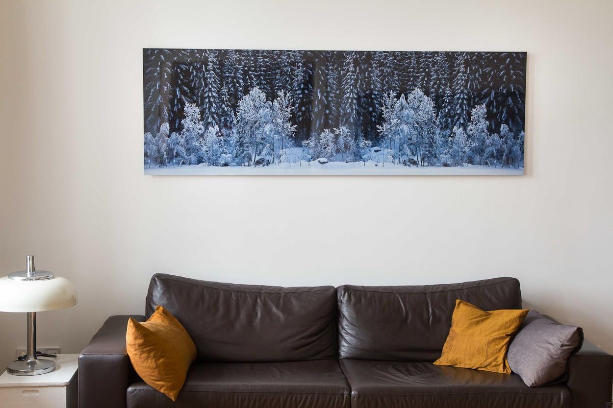 Black Forest - White Wood, Raumansicht | Fotografie von Finkbeiner & Salm, Lambda-Fotodruck auf Alu-Dibond, limitierte Edition