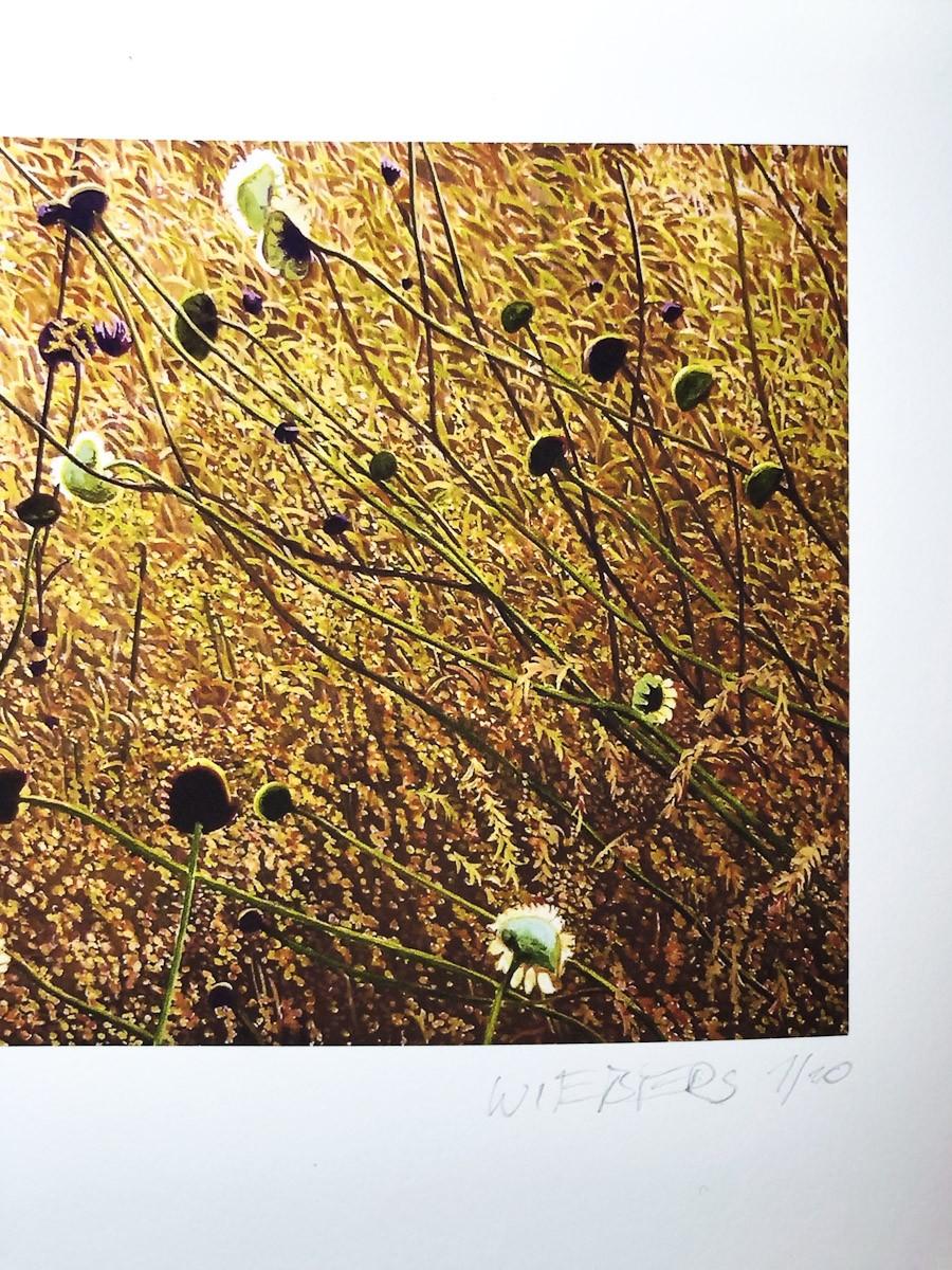 "Kunstdruck ""Korbbluetler"" by Wiebers   Fineartprint Hahnemühle, Limitierung 10 - Detail3"