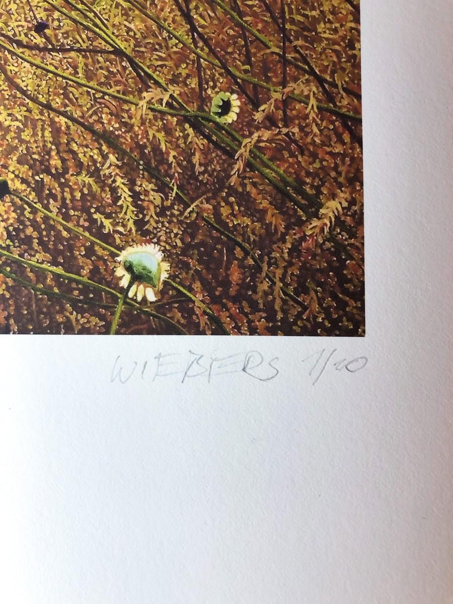 "Kunstdruck ""Korbbluetler"" by Wiebers   Fineartprint Hahnemühle, Limitierung 10 - Detail4"