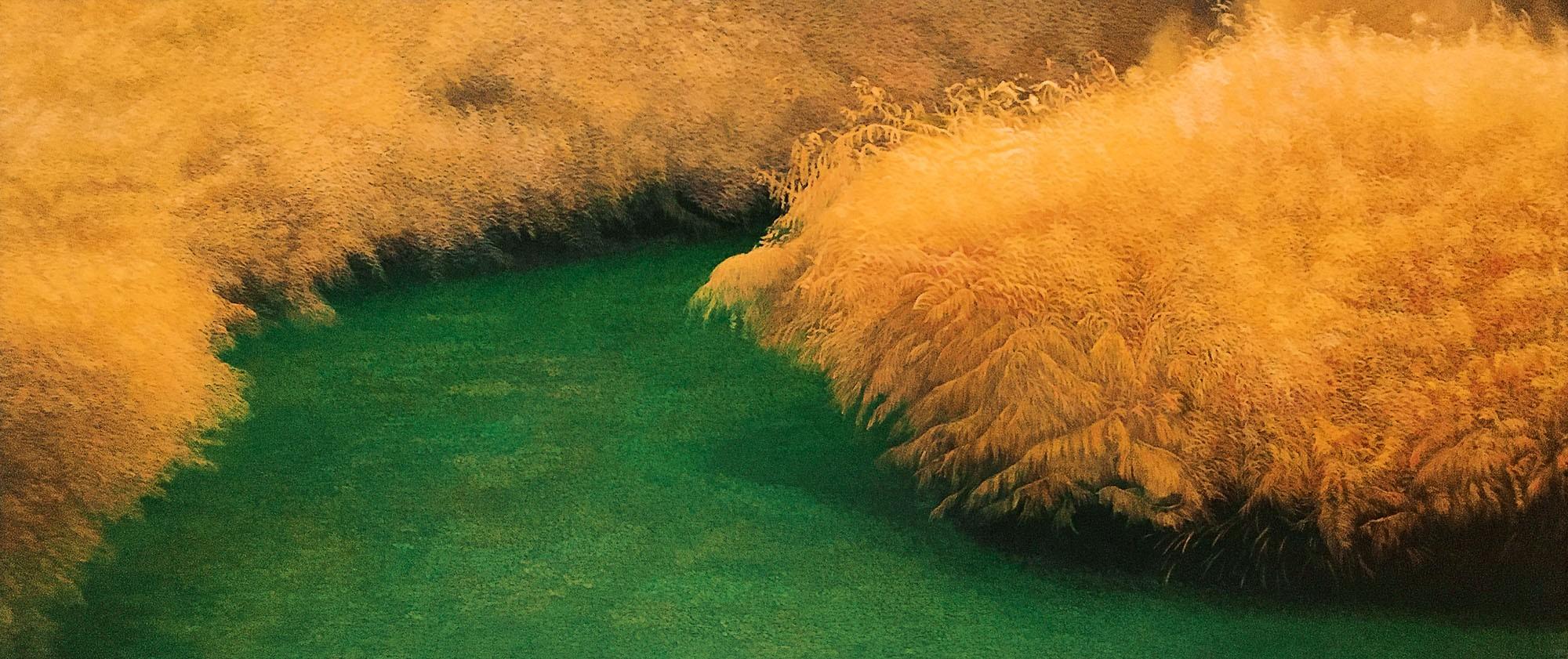 Busch | Malerei von Sven Wiebers | Acryl auf Leinwand, realistisch