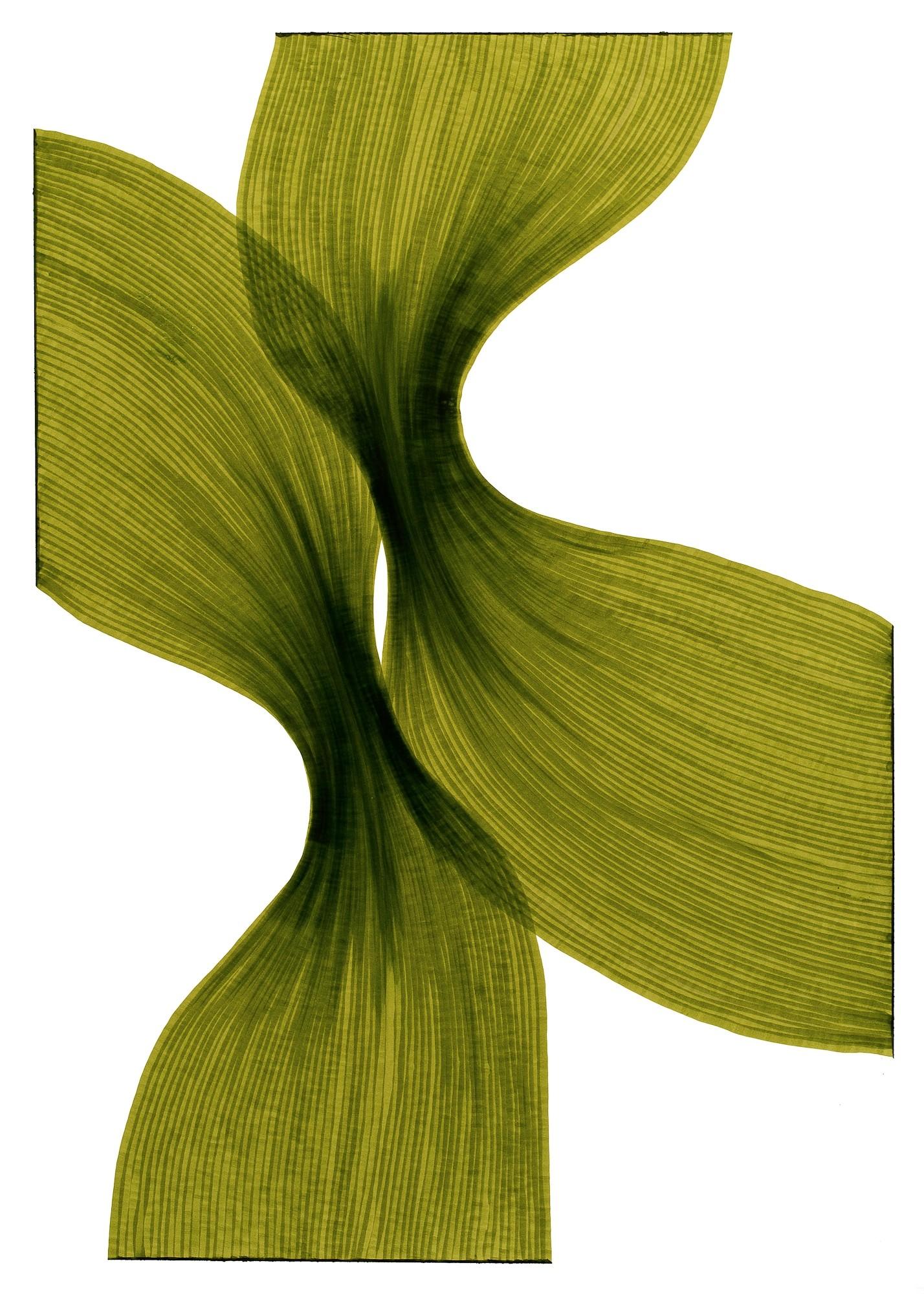 Banana Leaf Sheer Folds   Lali Torma   Zeichnung   Kalligraphietusche auf Papier
