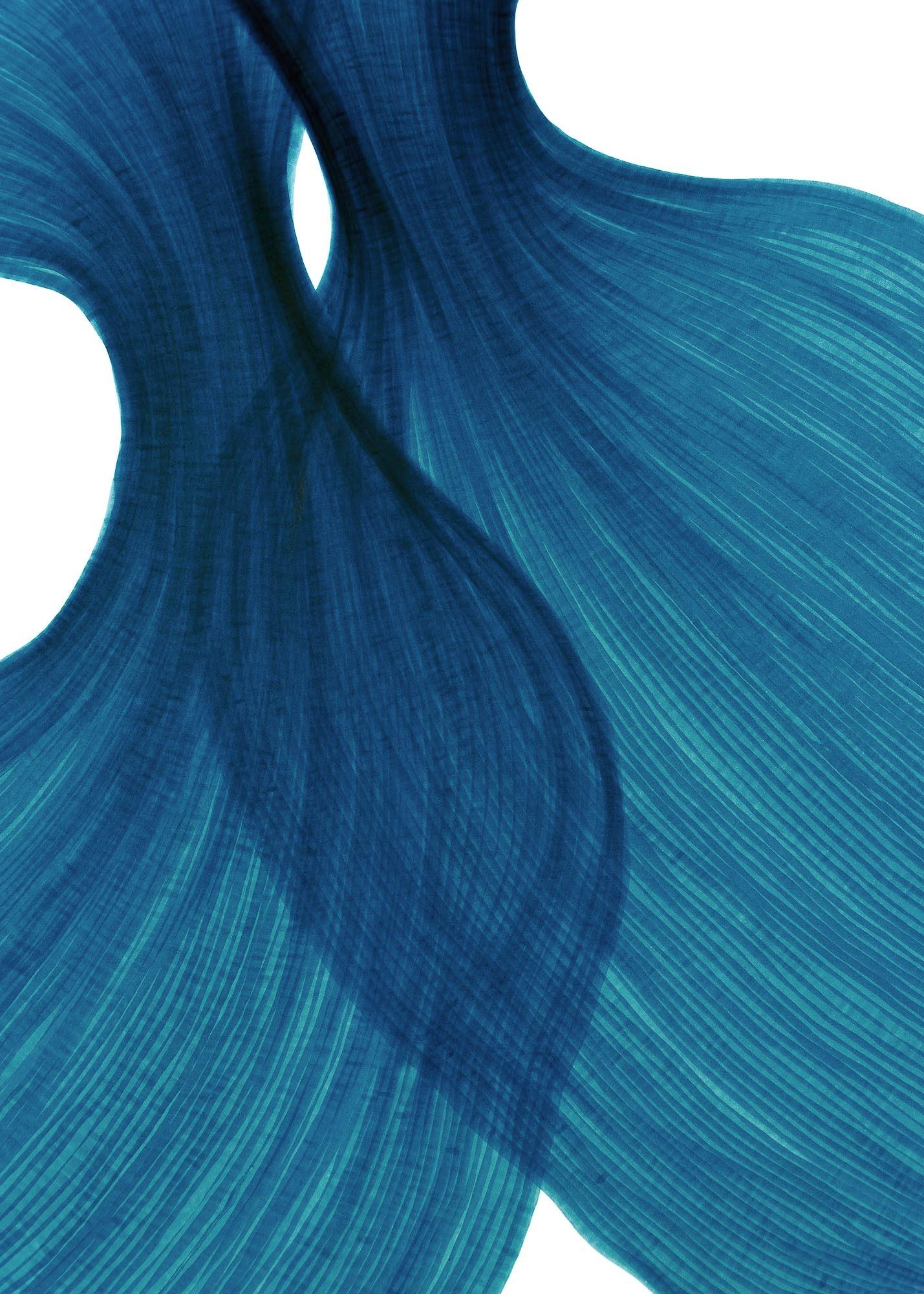 Sea Blue Sheer Folds | Lali Torma | Zeichnung | Kalligraphietusche auf Papier - 2