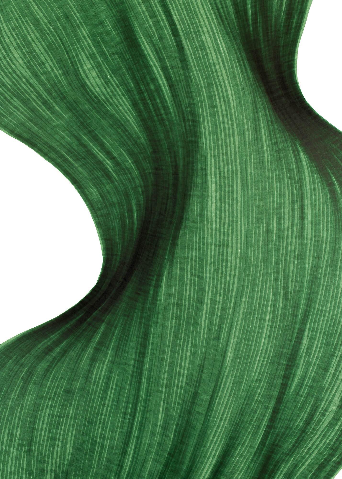 Evergreen Fold | Lali Torma | Zeichnung | Kalligraphie Tinte auf Papier - Detail