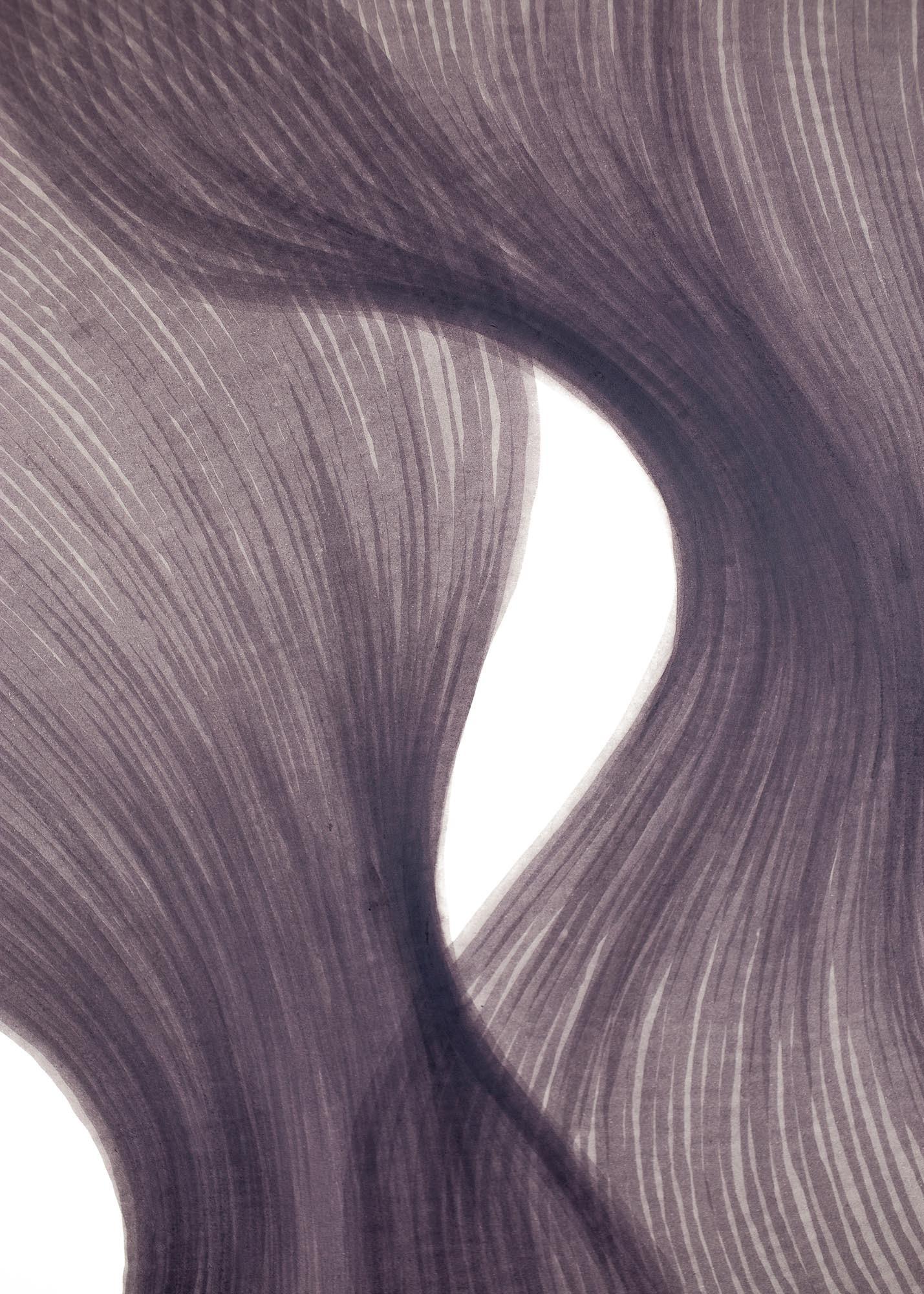 Smoky Lavender Sheer Folds | Lali Torma | Zeichnung | Kalligraphie-Tinte auf Papier - Detail