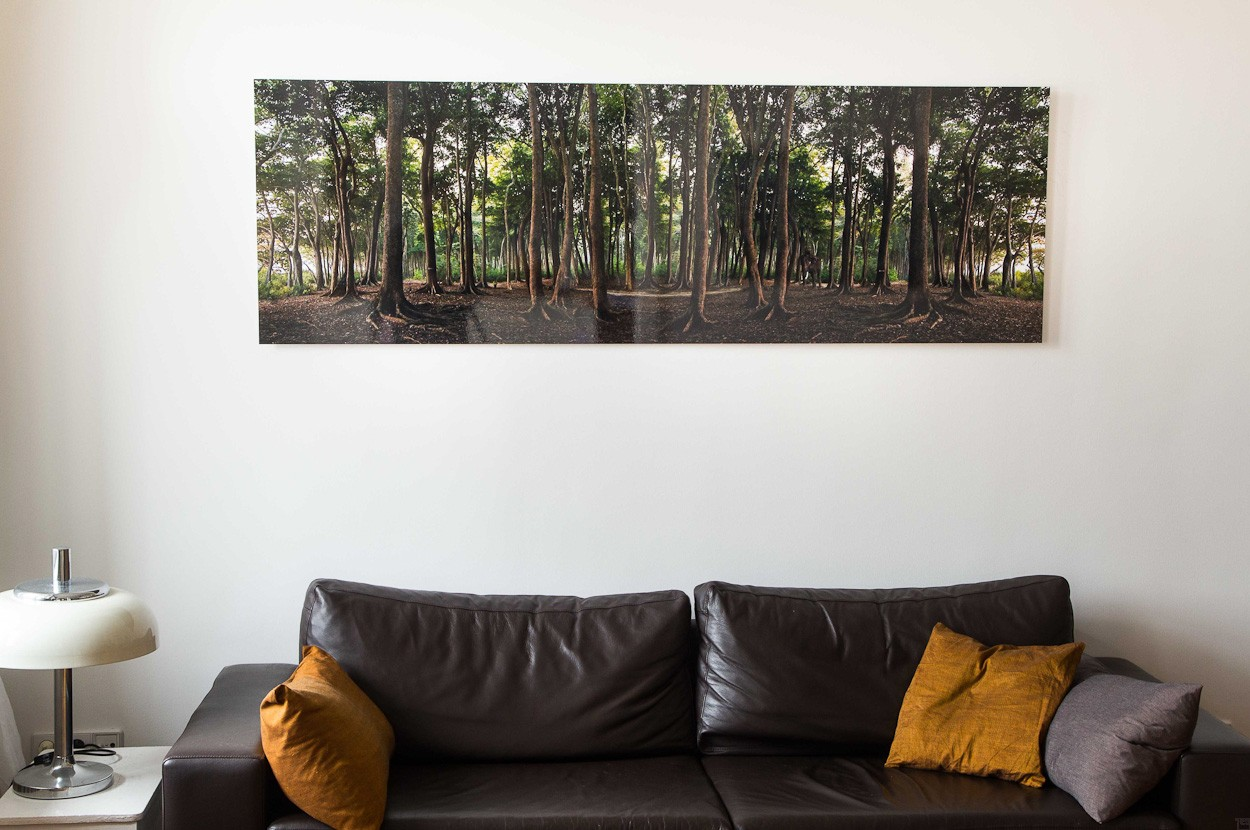 Elefantenwald, Raumansicht | Fotografie von Finkbeiner & Salm, Lambda-Foto-Abzug auf Alu-Dibond-Platte, limitierte Edition