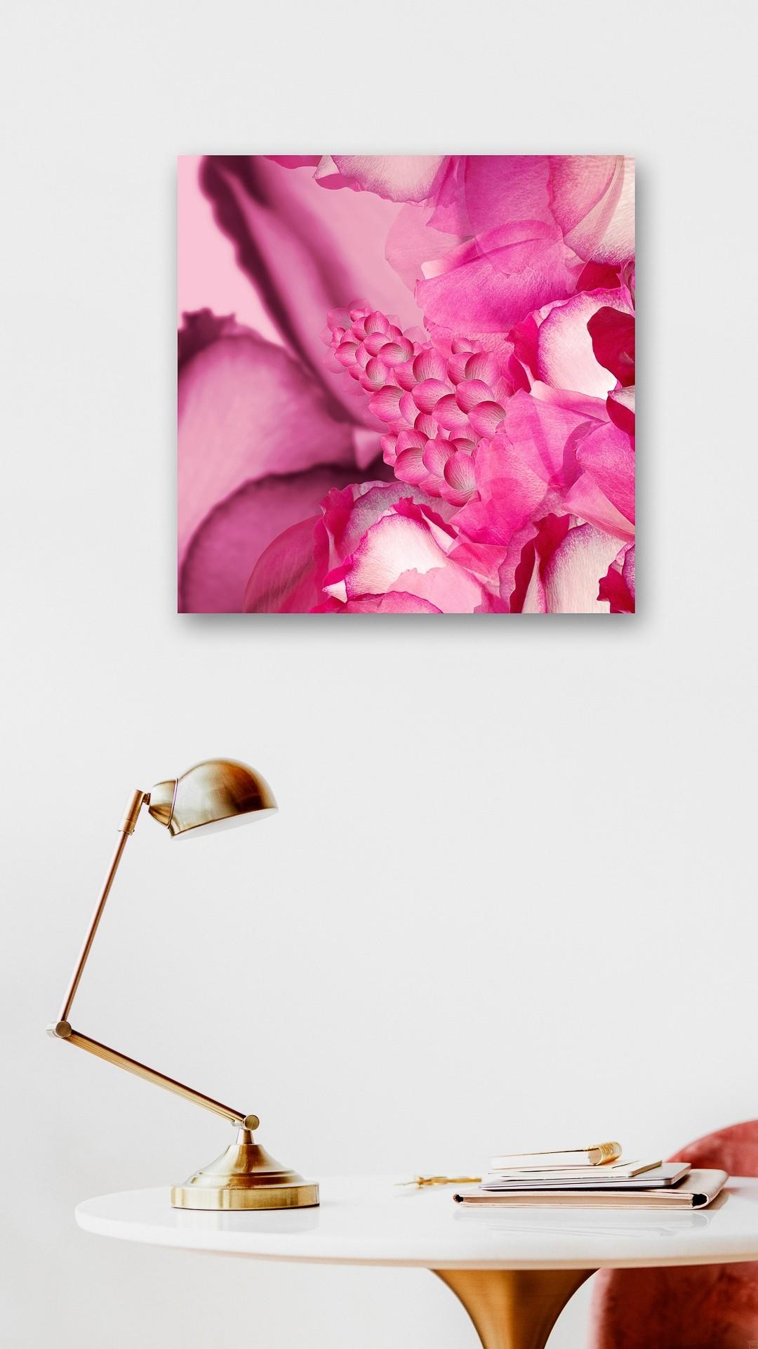 Rose Garden | Fotografie von Theresa Lambrecht, Fotodruck auf Alu-Dibond, limitierte Edition - 2